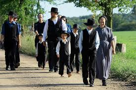 why don t amish children get autism your news wire