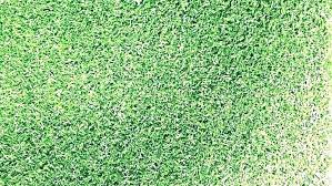 artificial turf rug awesome grass home depot for carpet rugby boots