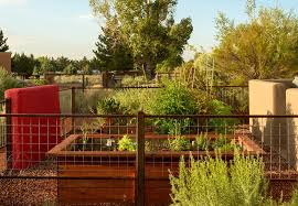 chicken wire garden fence. Vegetable Garden Fence Ideas Landscape Eclectic With Enclosed High Raised Chicken Wire I