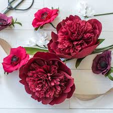 Peony Paper Flower Live Video Crepe Paper Red Charm Peony Lia Griffith
