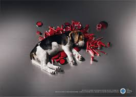 animal cruelty ads. Exellent Cruelty 60 Creative Public Awareness Ads That Makes You Think With Animal Cruelty C