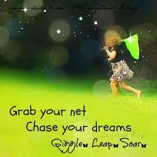 Grab Your Dreams Quotes Best of Grab Your Net And Chase Your Dreams Keep Calm Quotes Funny