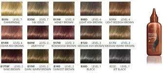 Clairol Beautiful B11w Honey Brown Hair Color 3 Oz