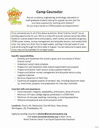 Camp Counselor Resume Best Of 53 Lovely Youth Counselor Resume