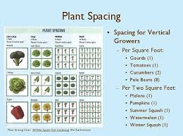 Square Foot Garden Plant Spacing Chart Pin By The Happy Gardening Life On The Happy Gardening Life