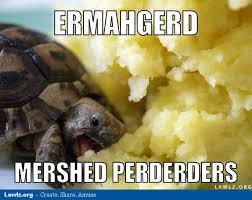 turtle-meme-ermahgerd-mershed-perderders-eating-mashed-potatoes ... via Relatably.com
