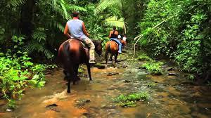 Image result for Belize horseback riding
