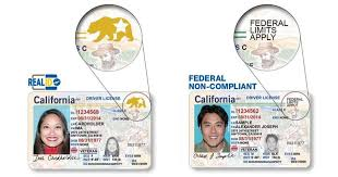 Avoid Sfchronicle Dmv Day Ways com At Ten To Your Whole Spending The x1CAqw