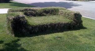 Grass Couch Vistas In Mar Vista Grass Couch Mar Vista Mom