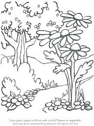 Coloring Pictures Of Plants Pages Page Trees And Flowers Desert