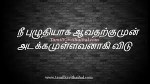 Beautiful Tamil Quotes Online About Life Adakkam Messages Images Delectable Nice Quotes Download