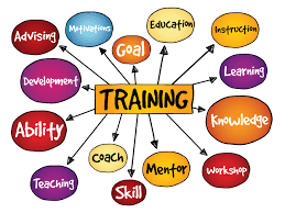 Training Strategy 5 Most Effective On The Job Training Strategies