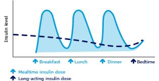 Insulin Preparations Chart Insulin