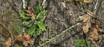 Mossy Oak Camo Patterns