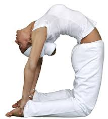 if full camel pose is too much of a stretch for you place your hands in the small of your back for support and arch backwards with your head