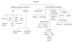 IELTS Writing Task    process diagram   ielts simon com English Forums IELTS Writing Task     Diagram