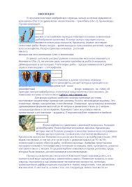 Эпифиз и его гормональные функции реферат по биологии скачать  Эволюция реферат по биологии скачать бесплатно жизнь растение животное иллюстрация фотография животные млекопитающие клетки энергии процесс
