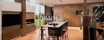 Kitchen Remodeling  Design Company In Houston TX Bay Area Kitchens - Houston kitchen remodel