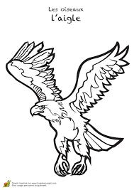Coloriage Oiseaux Les Aigles Sur Hugolescargot Com