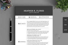 Best Professional Resume Template Fascinating 48 Best Cv Resume Templates Of 48 Design Shack For
