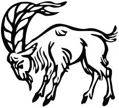 Small Picture Goat coloring page Goat free printable coloring pages animals