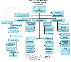 New York State Government Organizational Chart Organizational Structure Of U S Department Of Essay Sample