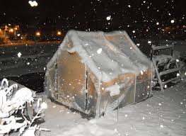 dog house in winter