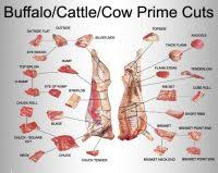 Buffalo Cuts Chart Buffalo Cuts Chart Pin Buffalo Meat Cuts On Pinterest