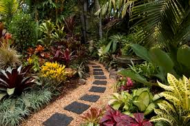 Small Picture Tropical Garden Ideas Uk Plants For 11 17 Best Images Throughout