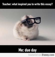 teacher what inspired you to write this essay com teacher what inspired you to write this essay