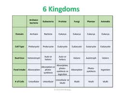 Kingdoms Of Biology Chart 60 Rational Six Kingdoms Of Biology Chart