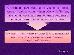 Презентация на тему МОДУЛЬ Выпускной письменный тест реферат  5 Биосфера
