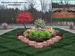 Laceleaf Japanese Red maple used in a front yard island planting.