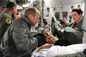 Airmen successfully medevac Antarctic worker > U.S. Air Force > Article  Display