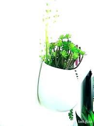 west elm wall planter
