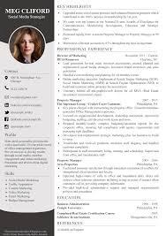 Modern Column Resume Classic Resume Modern Resume Design Premium Resume Two