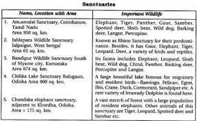 short essay on wildlife conservation short essay on wild life protection