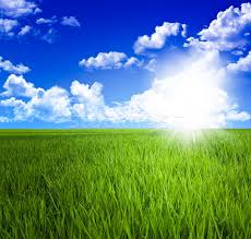 green grass field and sky stock photo gualtiero boffi tiero