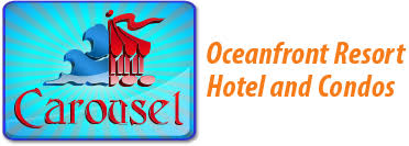 Image result for carousel ocmd logo