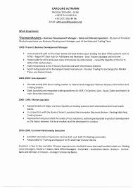 Business Development Manager Resume Doc India Best Of Business Fascinating Resumedoc