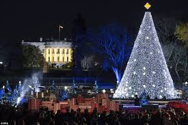 the 94th annual national tree lighting took place on the ellipse the public park
