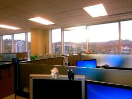 software company office. springbrook software office photos add cow herd company mascots are named herfie and bert new ones released yearly
