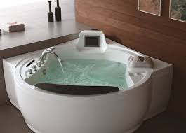 jetted bathtub cleaner canada ideas