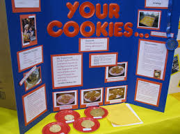 science fair information science fair fair projects and science science fair information