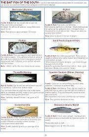 Measuring Salt Water Florida Fish Florida Fishing