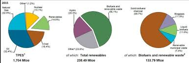 The Pie Charts Illustrate The Distribution Of Energy Sources