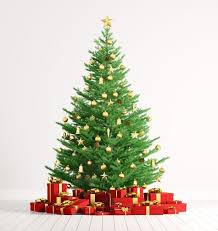 Httpsi2prodmirrorcoukincomingarticle11548What Day Do You Take Your Christmas Tree Down On