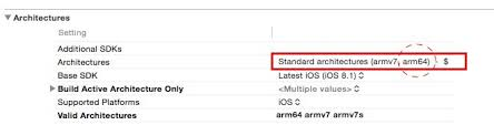 arm64 architecture xcode. make sure your library dependencies and own project is compatible with 64-bit architectures. in xcode, it should include arm64 architecture xcode