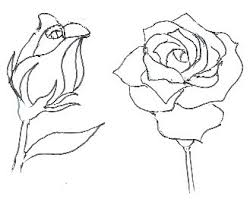 Small Picture How to Draw Roses