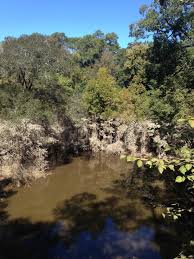 cape fear botanical garden fayetteville north ina can you tell how high the